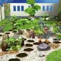 Những điều kiêng kị với môi trường xung quanh ngôi nhà của bạn